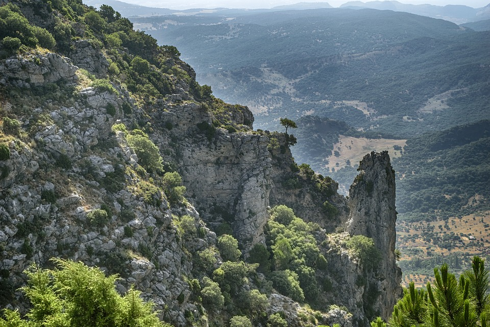 Aunque vivas aquí… ¿conoces Andalucía?