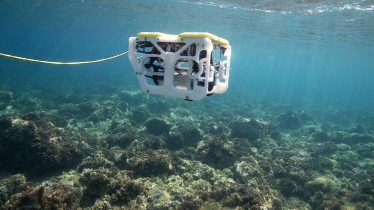 La nueva pesca sostenible 3.0, la pesca inteligente desde Andalucía