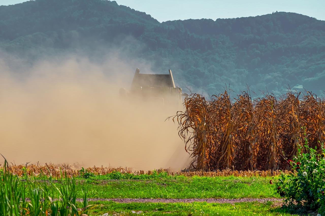 La sequía en Andalucía dificulta el suministro de agua a los agricultores y agrava la situación de la ganadería