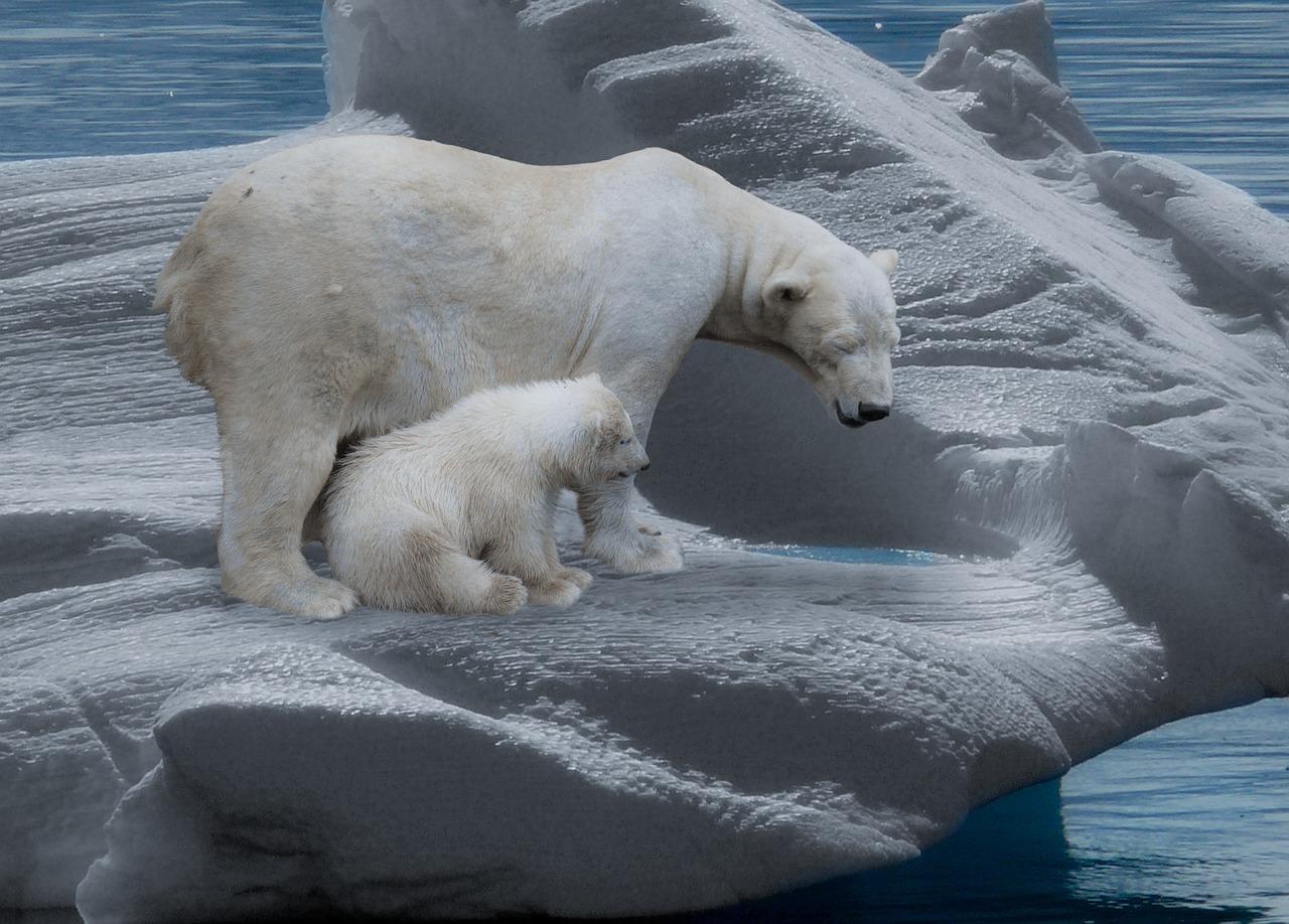 Tenemos malas noticias: los glaciares marinos se derriten más rápido de lo previsto