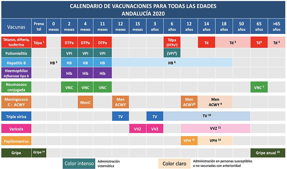 Calendario de vacunas en Andalucía 2020