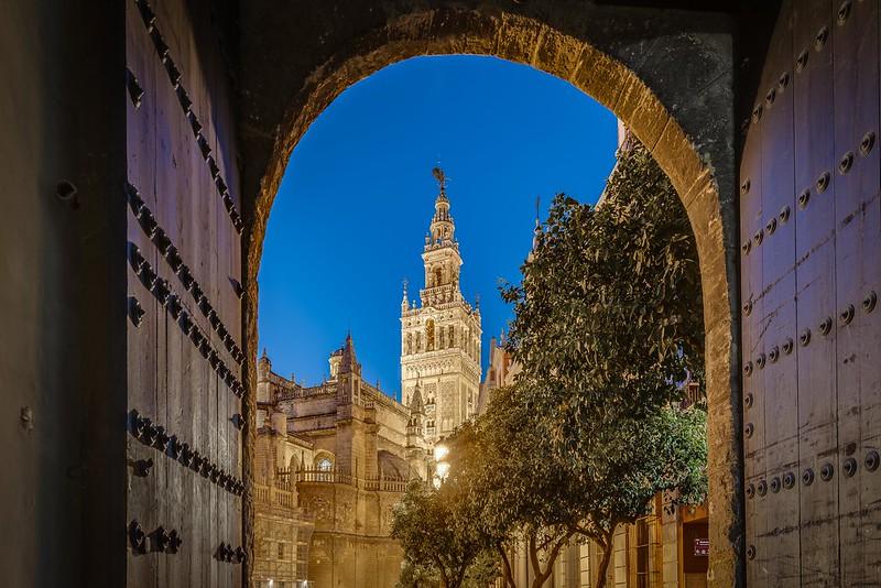 Noticias de Sevilla: Te contamos la programación de las noches de verano en Sevilla