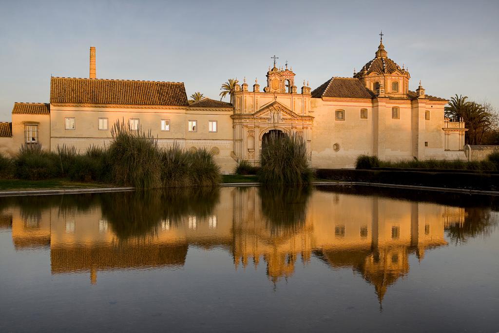 17 exposiciones temporales y más de un centenar de actividades en Andalucía