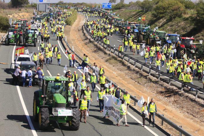 """Más de 16.000 personas se movilizan en Andalucía para pedir """"precios dignos"""" para el campo"""