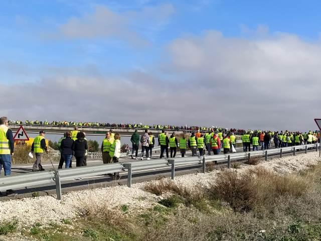 Los olivareros volverán a las protestas en Andalucía si continúan los bajos precios del aceite de oliva