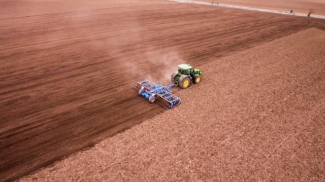Los agricultores crean una bolsa de trabajo para un campo que necesita más de 100.000 trabajadores