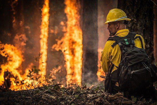 Prohibidas desde hoy las barbacoas y quemas agrícolas en los espacios forestales de Andalucía