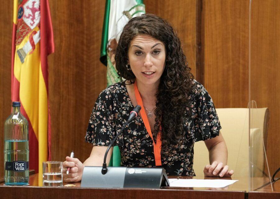 Fakali en el Parlamento de Andalucía