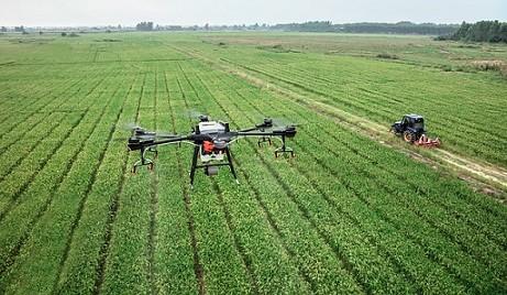 La fumigación con drones para lucha contra la Fiebre del Nilo arranca esta semana en Andalucía