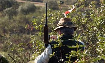 Los ecologistas denuncian que la Junta está autorizando a los cazadores a moverse libremente por Andalucía