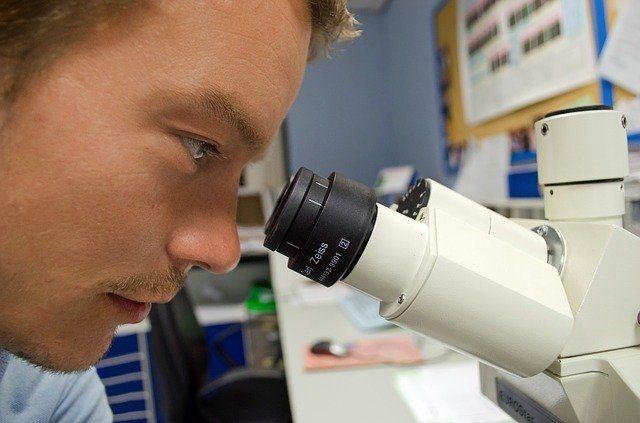 Los jóvenes contratados serán ayudantes de investigación y personal técnico.