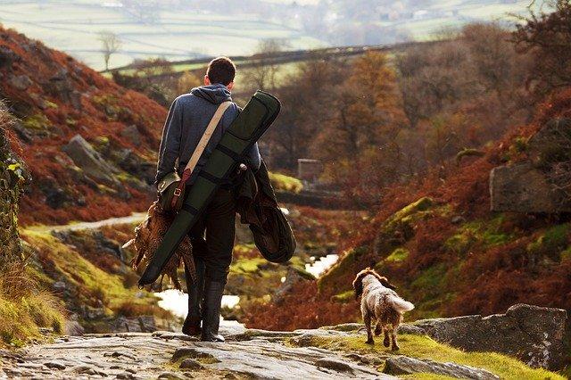 La Junta quiere una nueva Ley de Bienestar Animal de Andalucía para excluir a los perros de caza del concepto de maltrato animal