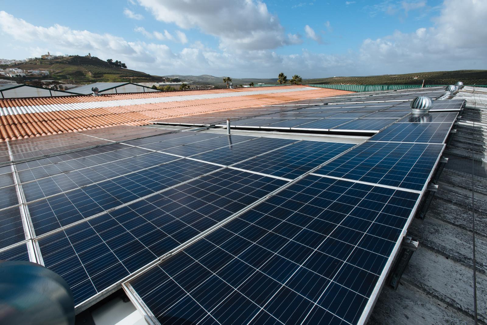 11.000 hogares y empresas andaluzas ya cuentan con instalaciones de autoconsumo eléctrico para ahorrar en su factura de la luz ¿cómo lo han hecho?