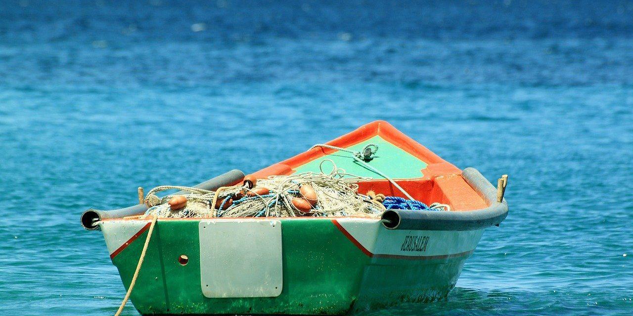 Andalucía comienza a diseñar el futuro de la agricultura y la pesca para los próximos años