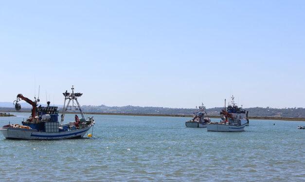 Andalucía pide la creación de un grupo de trabajo que garantice el futuro de la pesca del Mediterráneo