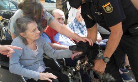 Noticias Cádiz: Los perros policía y las personas mayores en la residencia Matía Calvo