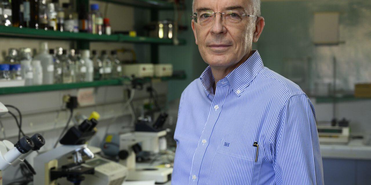 """Entrevista: """"El cáncer es una consecuencia de nuestra propia biología y siempre va a estar ahí"""""""
