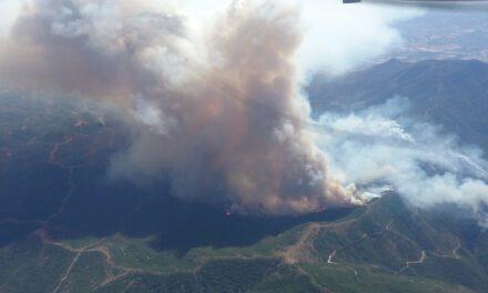 El incendio de Sierra Bermeja se cobra la vida de un bombero forestal y más de mil personas han tenido que ser desalojadas de sus hogares